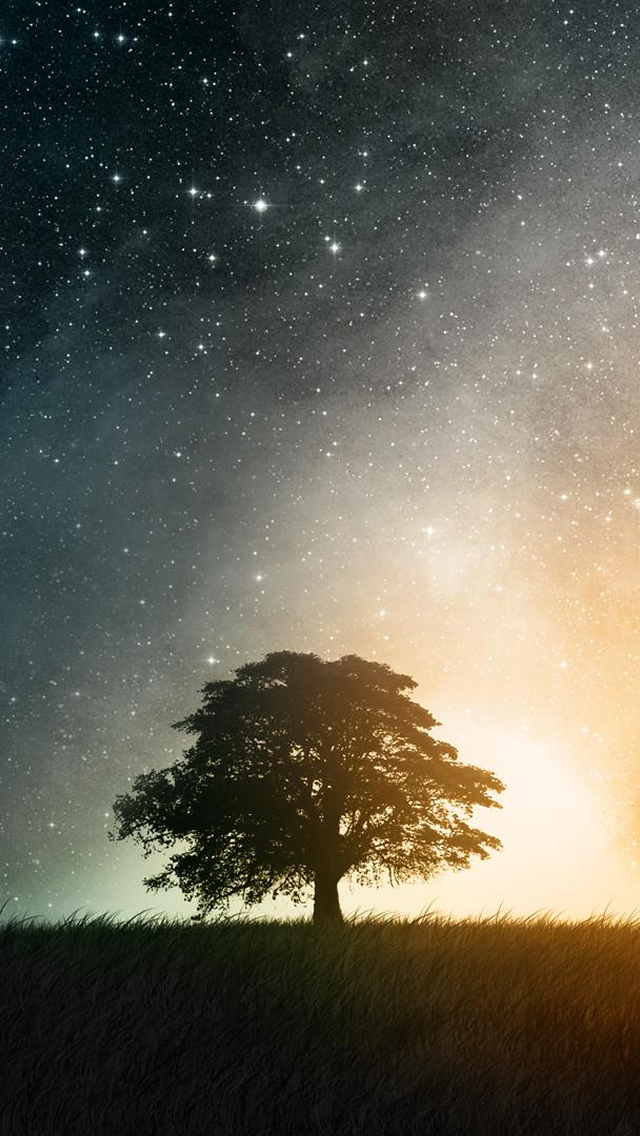 Wallpapers-For-iPhone-5-Art-59-640×1136