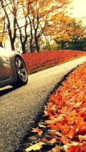 Wallpapers-For-iPhone-5-Cars-43-thumb-120×214