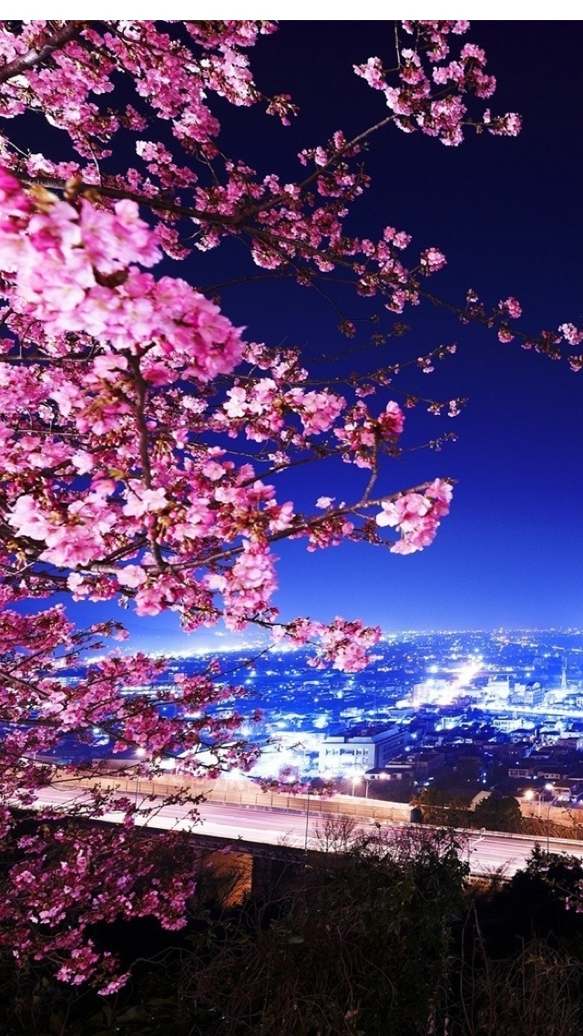 Spring City view iPhone 5 wallpaper 640*1136