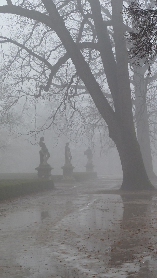 Fog City view iPhone 5 wallpaper 640*1136