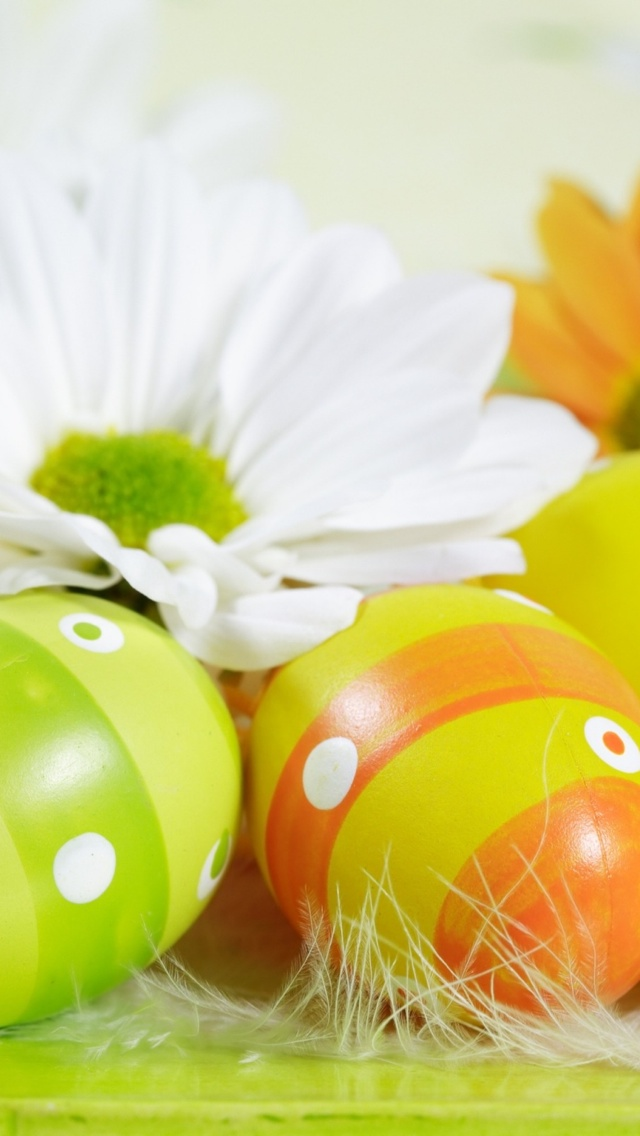 Easter Eggs and flower iPhone 5 wallpaper 640*1136