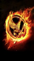 Wallpapers-For-iPhone-5-Fire-9-thumb-120×214