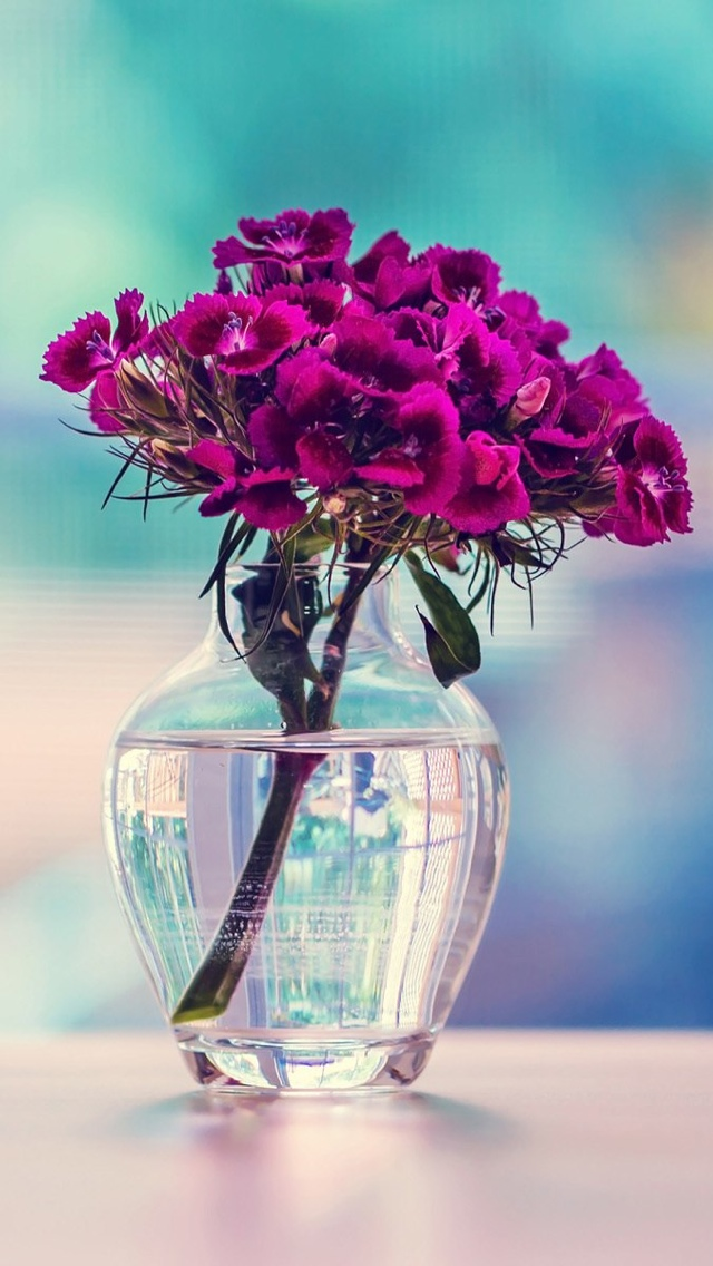purple flowers buquet iphone wallpaper 640*1136