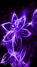 Wallpapers-For-iPhone-5-Frames-139-thumb-120×214