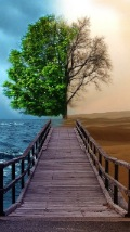 Wallpapers-For-iPhone-5-Landscapes-1-thumb-120×214