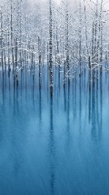 Wallpapers-For-iPhone-5-Landscapes-38-thumb-120×214