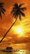 Wallpapers-For-iPhone-5-Landscapes-75-thumb-120×214
