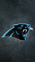 Wallpapers-For-iPhone-5-NFL-19-thumb-120×214