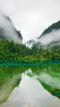 Wallpapers-For-iPhone-5-Nature-18-thumb-120×214