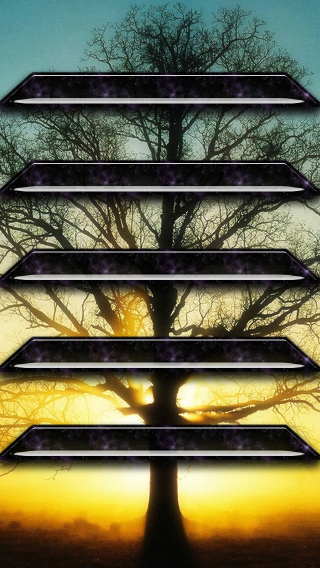 Wallpapers-For-iPhone-5-Shelves-181-640×1136