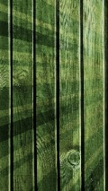 Green paint over wooden fence