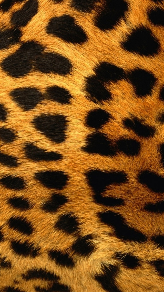 Leopard Pattern Wallpaper iPhone 5 640*1136