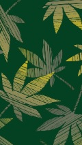 green ganja leaf background